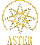 Mc Aster